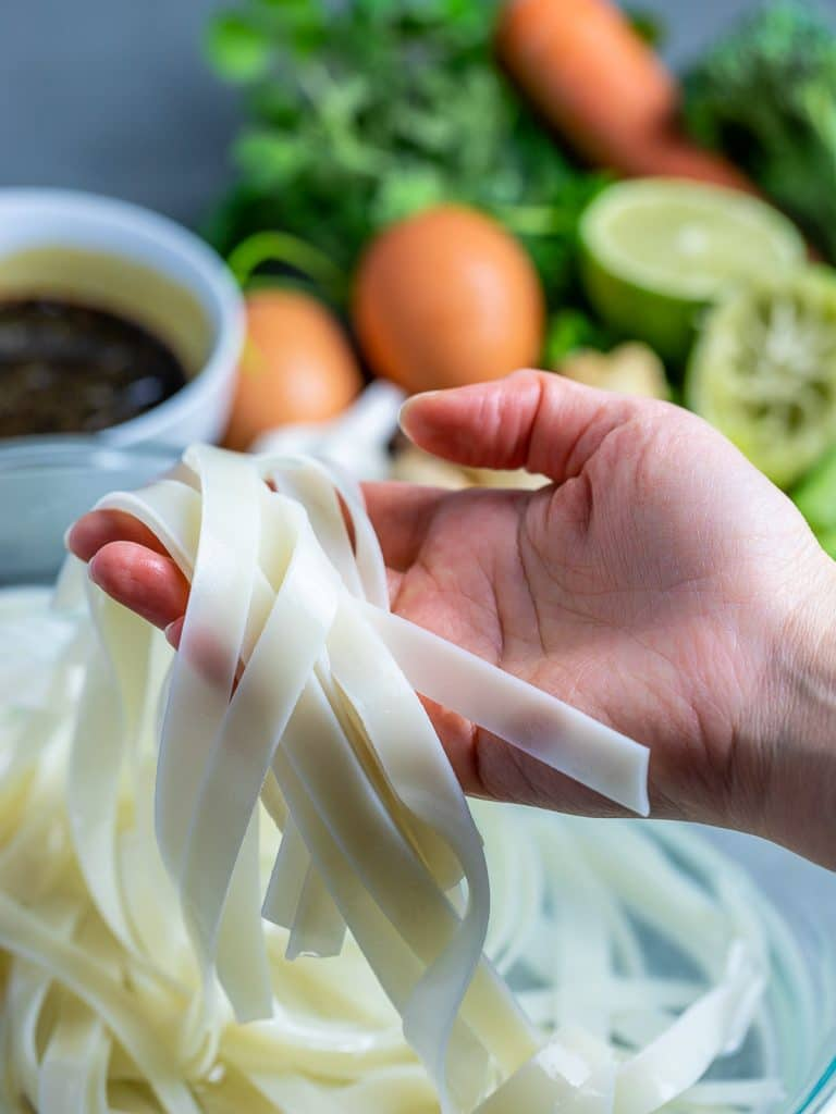 rice noodles held in hand