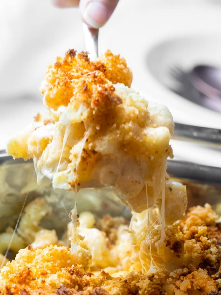 spoonful of southern baked mac and cheese with a golden brown breadcrumb topping