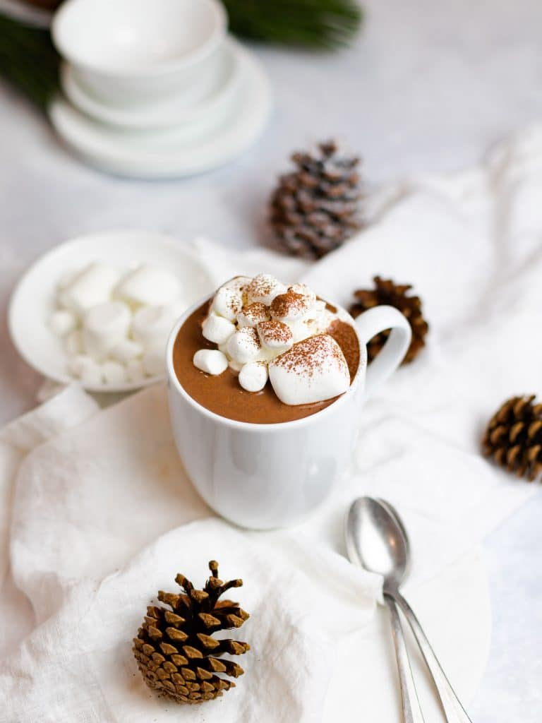 homemade hot chocolate with marshmallows and cocoa powder