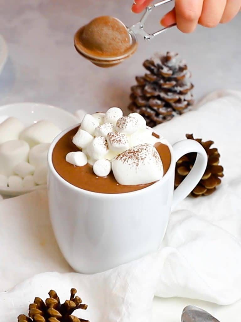 rich and creamy hot chocolate with marshmallows dusted with cocoa powder