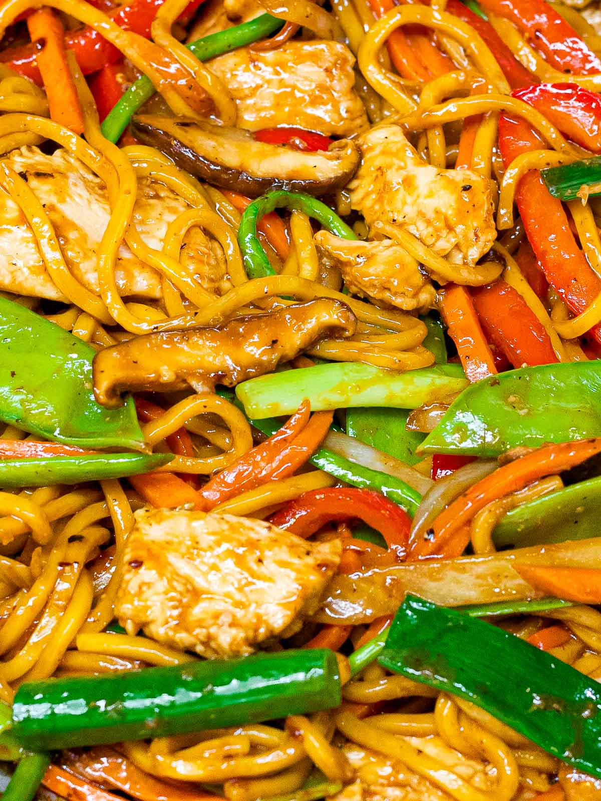 close up of chicken lo mein with shiitake mushrooms, scallions, and red peppers