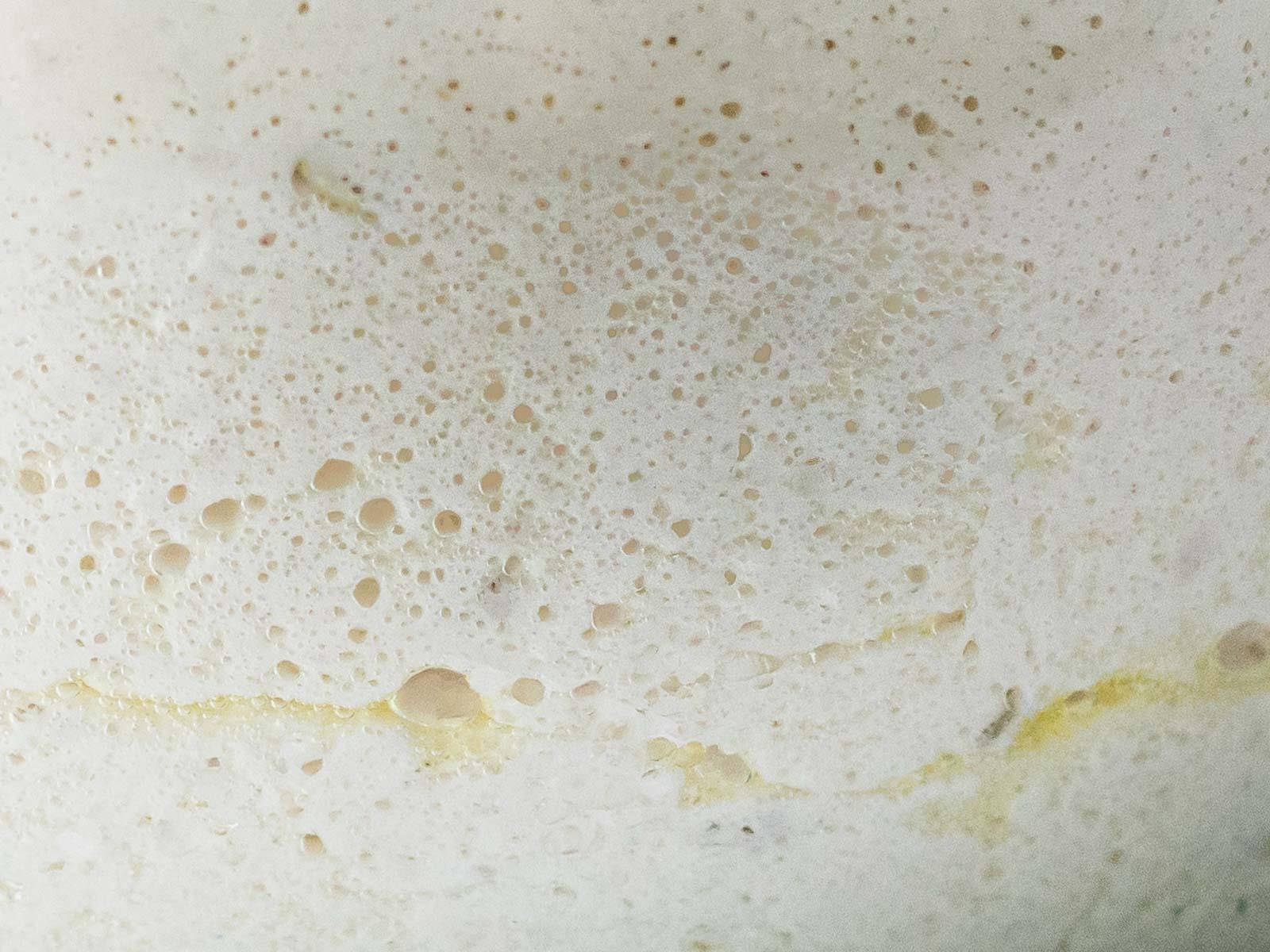 close up of sourdough focaccia dough after bulk fermentation