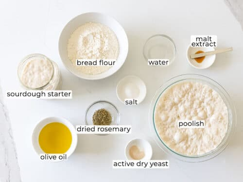 ingredients for sourdough focaccia bread with rosemary
