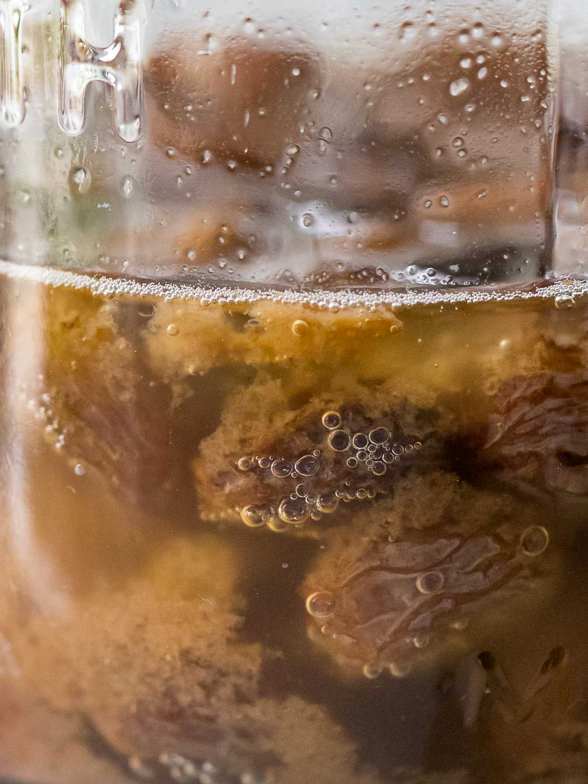 close up of raisin yeast water fermenting in a glass jar