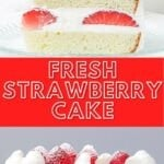 a slice of fresh strawberry cake layered with whipped cream and fluffy sponge cake