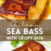 Chilean sea bass pan seared with crispy skin with text overlay.