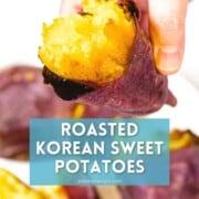Roasted Korean sweet potatoes held by hand.