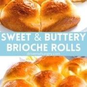 Sweet buttery brioche dinner rolls with golden brown crust.